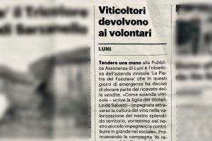 articolo-luni-vermentino-covid19