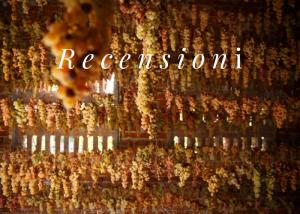 recensioni-critics-vino-wine
